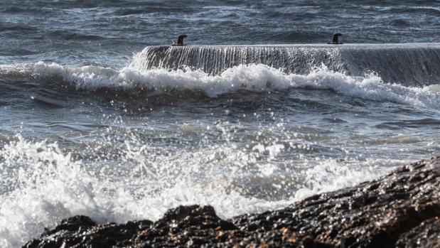 Grandes olas rompen en la costa de Santa Ponça durante el temporal que afecta a la región balear