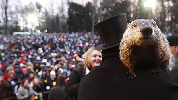 El día de la marmota se celebra en Estados Unidos y Canadá cada 2 de febrero