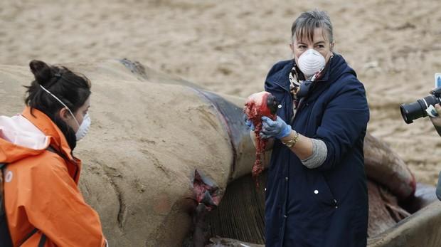 Una profesora de medicina de la Universidad del País Vasco, con u ojo de la ballena