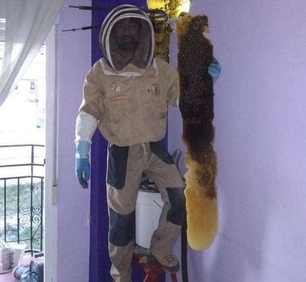 El apicultor Sergio Guerrero junto a la colmena