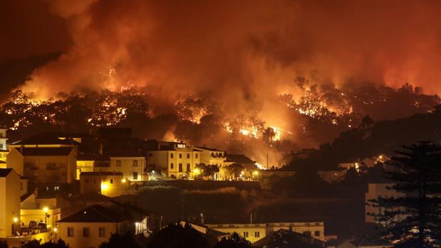 Un bosque en llamas en los incendios de Portugal