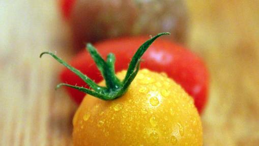 Rosa, Kumato y Corazón de buey son algunas de las variedades más exclusivas de tomate