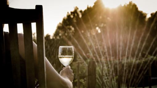 Los vinos jóvenes son mucho más refrescantes