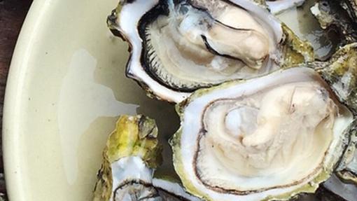 peligro comer ostras