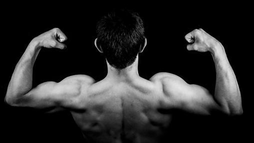Trabajar los biceps es fundamental para aumentar volumen