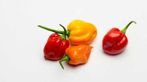 El chile es el ingrediente con más poder picante