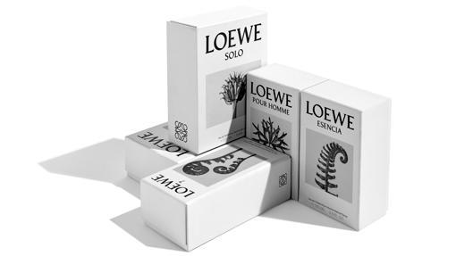 El nuevo packaging de Loewe con las fotografías botánicas de Blossfeldt