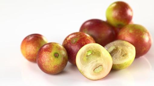 El camu-camu es una fruta rica en vitamina C