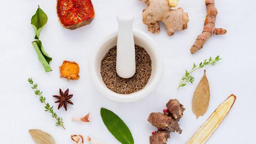 La galanga es una planta parecida al jengibre muy utilizada en las cocinas asiáticas