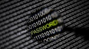 «Hackers» nacionales convertidos en gallinas de los huevos de oro