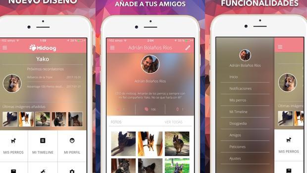 Midoog: la aplicación para tu perro