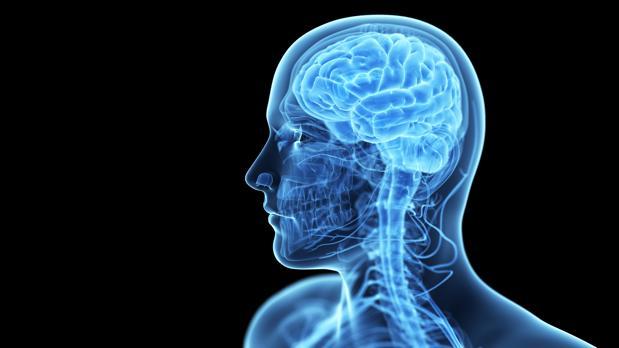 Los pacientes mejoraron un 15 por ciento su memoria