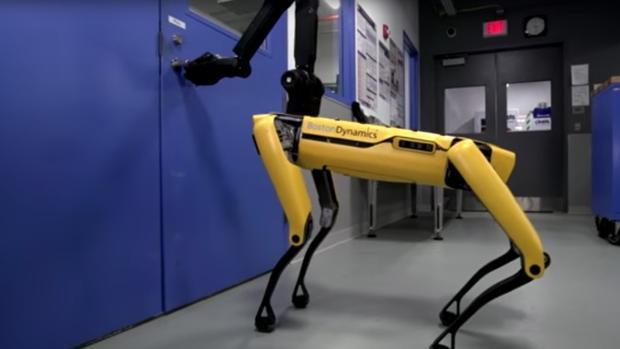 Captura del video en donde se aprecia el cuadrúpedo abriendo una puerta
