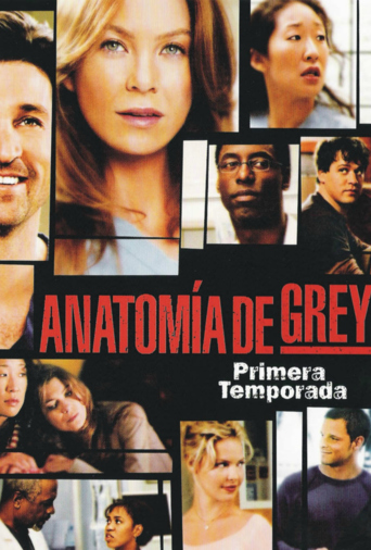 Temporada 1 De Anatomía De Grey Serie Play Series