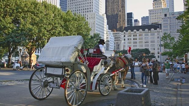 Los carruajes solo podrán circular por Central Park