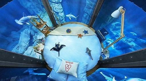 La cama en el acuario, vista desde arriba