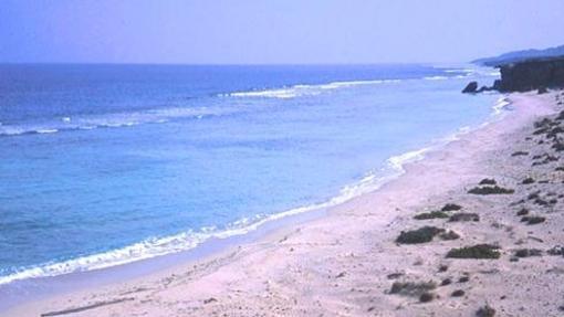 Vista de una playa de tortugas en Mukawwar Island