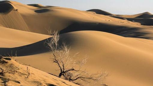 Dunas del desierto de Lut