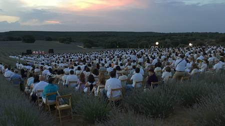 Una noche de concierto en el Festival de la lavanda