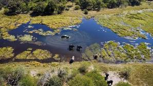 El delta del Okavango, en Botsuana