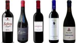 Diez vinos sabrosos de la provincia de Valladolid