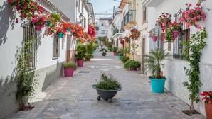 Una de las calles de Estepona, «iluminada» con plantas