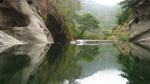Reserva de Biosfera Transfronteriza de Bosques de Paz