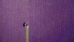 Las fotos aéreas más impresionantes de 2017 tomadas con drones