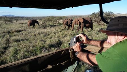 Observación de elefantes en Lewa