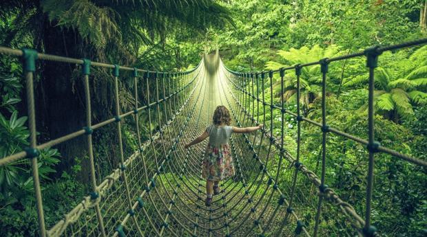 Puente colgante de «The Lost Gardens of Heligan»