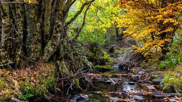 Siete paisajes naturales donde descubrir la mejor Castilla ...