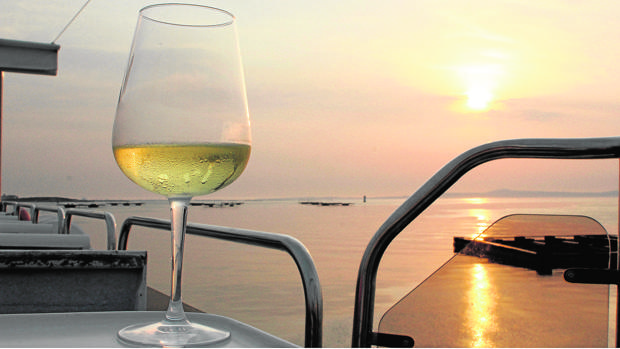 Cata comentada en catamarán, en las Rías Baixas