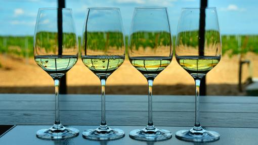 Cata de vinos de Verdejo