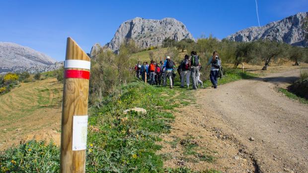 Un grupo de excursionistas en la Gran Senda de Málaga, en las proximidades de Alfarnate