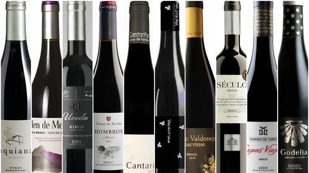 Diez vinos de El Bierzo, con la uva mencía protagonista