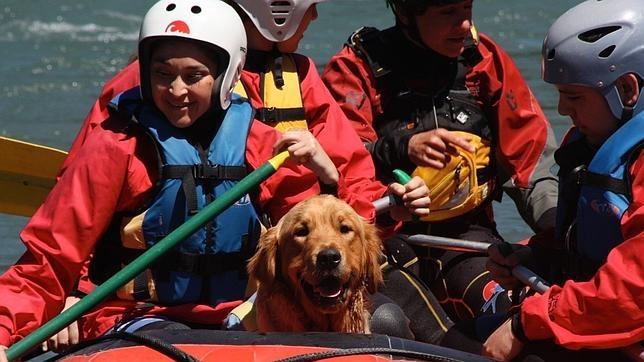 En el hotel La Casa del Río organizan actividades con los perros, como por ejemplo, rafting