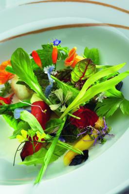 Gastronomía Las flores también se comen